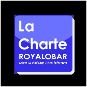 La Charte graphique avec les éléments graphiques