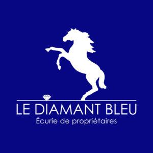 Logo écurie de propriétaires